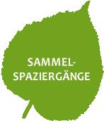 SAMMELSPAZIERGANG